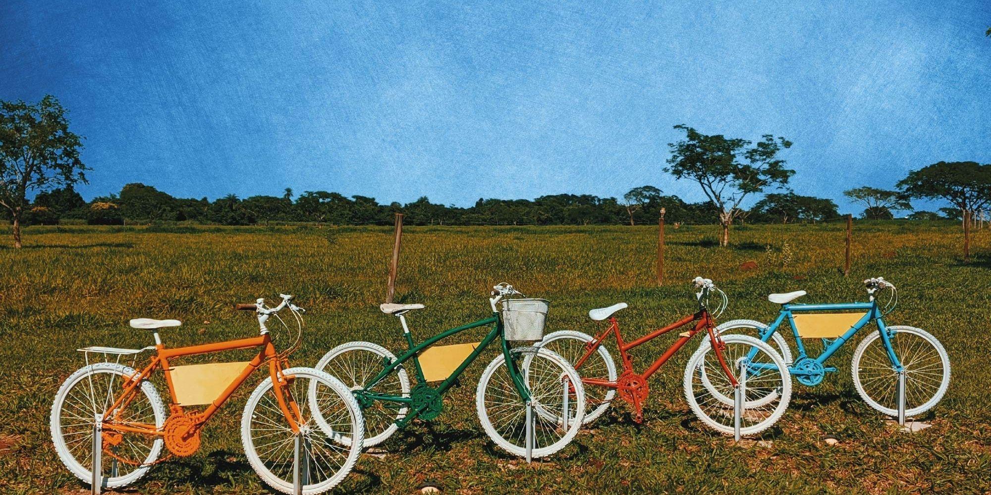 Cisp - Si guadagna con il turismo sostenibile?